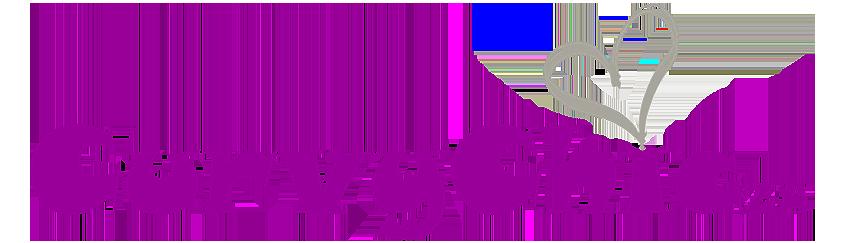 CurvyChic